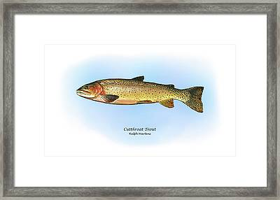 Cutthroat Trout Framed Print by Ralph Martens