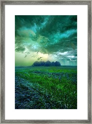 Cutting Loose Framed Print by Phil Koch