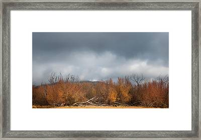 Cuyamaca Autumn Framed Print