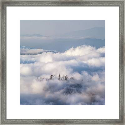 Framed Print featuring the photograph Cuyamaca Island by Alexander Kunz