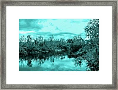 Framed Print featuring the photograph Cyan Dreaming - Sarasota Pond by Madeline Ellis