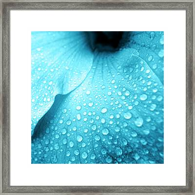 Aqua Droplets Framed Print by Sean Davey