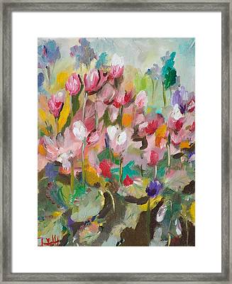 Cyclamen No.3 Framed Print by Delilah  Smith