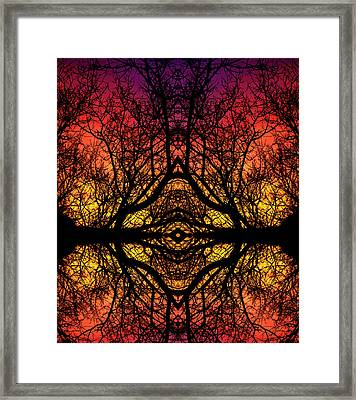 Cymatic Forrest  Framed Print by Christopher Phelps