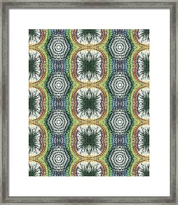 Cymatics Geometry #1545 Framed Print
