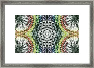 Cymatics Geometry #1548 Framed Print