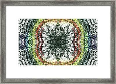 Cymatics Geometry #1550 Framed Print