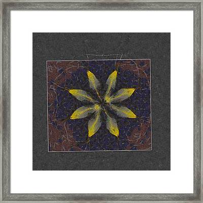Cyphella In The Altogether Flowers  Id 16163-231118-12291 Framed Print by S Lurk