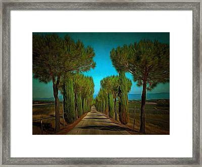 Cypress Avenue Framed Print