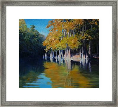 Cypress Bank Framed Print by Kevin Lawrence Leveque