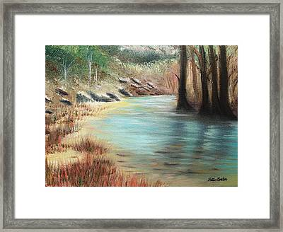 Cypress Bend Framed Print