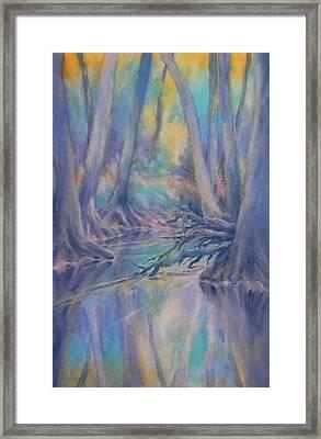 Cypress Creek Sunrise Framed Print by Virgil Carter