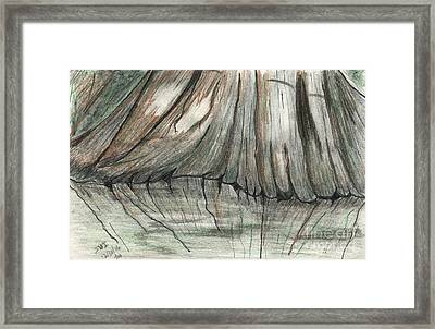 Cypress Reflections Framed Print by Theresa Willingham