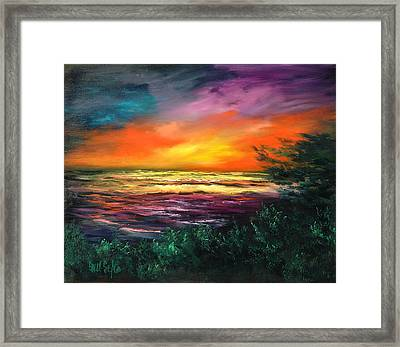 Cypress Sunset Framed Print by Sally Seago