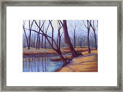Cypress Trees Framed Print by MaryAnn Stafford