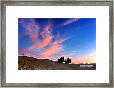 Cypress Trees On The Field In Tuscany, Italy At Sunset Framed Print by Michal Bednarek
