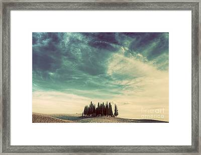Cypress Trees On The Field In Tuscany, Italy At Sunset. Vintage Framed Print
