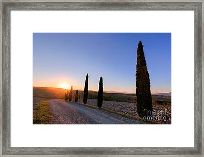 Cypress Trees Road In Tuscany, Italy At Sunrise. Val D'orcia Framed Print