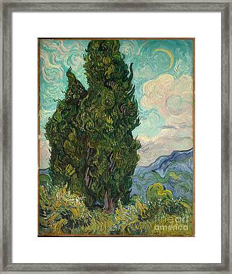 Cypresses  Framed Print by Vincent van Gogh