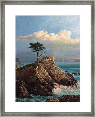 Cyprus Pine Framed Print