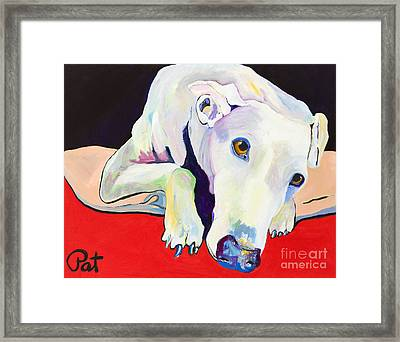 Cyrus Framed Print by Pat Saunders-White