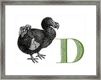 D Dodo Framed Print