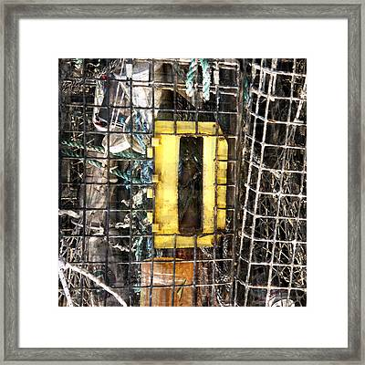 Framed Print featuring the photograph D Is For... by Tom Romeo