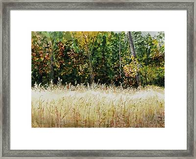 Framed Print featuring the painting D Vine by Lynn Babineau