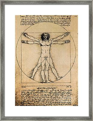Da Vinci Rule Of Proportions Framed Print by Science Source