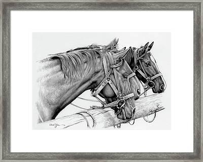 Da158 3 Horses Daniel Adams  Framed Print