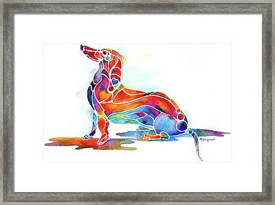 Dachshund Framed Print by Jo Lynch