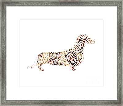 Dachshund Framed Print by Laura Bell