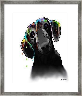 Dachshund Framed Print by Marlene Watson