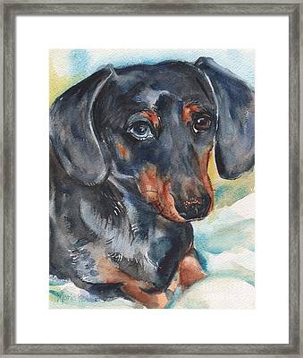 Dachshund Portrait In Watercolor Framed Print by Maria's Watercolor