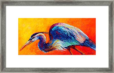 Daddy Long Legs - Great Blue Heron Framed Print by Marion Rose