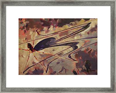 Daddy Long Shadow Framed Print by Tim  Heimdal