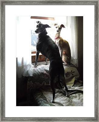 Daddy's Home Framed Print by Ray LeCara Jr