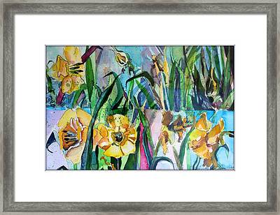 Daffodil Delight Framed Print by Mindy Newman
