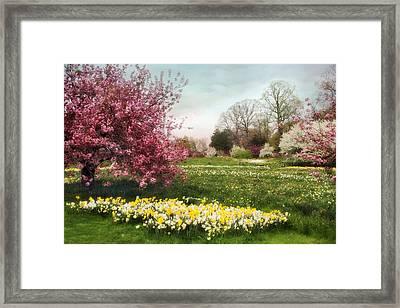 Daffodil Meadow Framed Print by Jessica Jenney