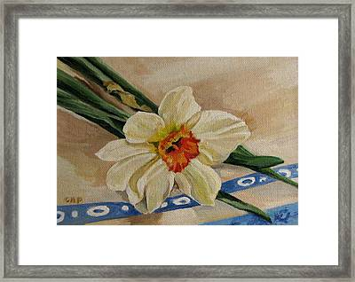 Daffodil Reclining Framed Print by Cheryl Pass