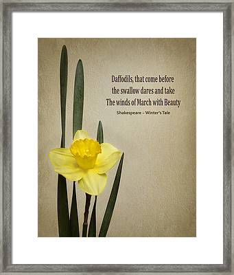 Daffodil - Spring Framed Print by Nikolyn McDonald