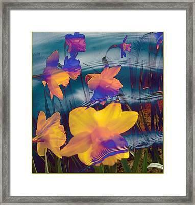 Daffodils #1 Framed Print