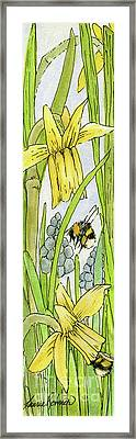 Daffodils And Bees Framed Print