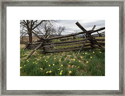 Antietam- The Bloody Lane Framed Print by John Daly