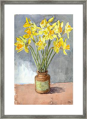 Daffodils In A Pot. Framed Print by Mike Lester