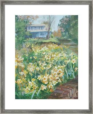 Daffodils On The Corner Framed Print by Carol Strickland