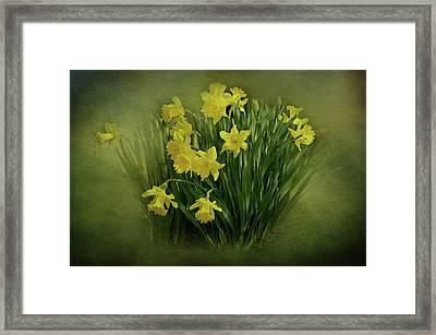 Daffodils Framed Print by Sandy Keeton