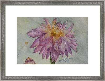 Framed Print featuring the painting Dahlia At Eastport Me by Donna Walsh