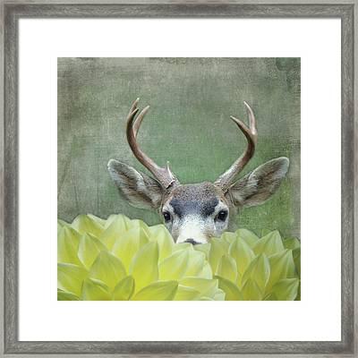 Framed Print featuring the digital art Dahlia Deer by Sally Banfill