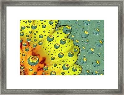 Dahlia Galaxy One Framed Print